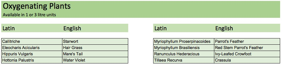 OxygenatingPlants